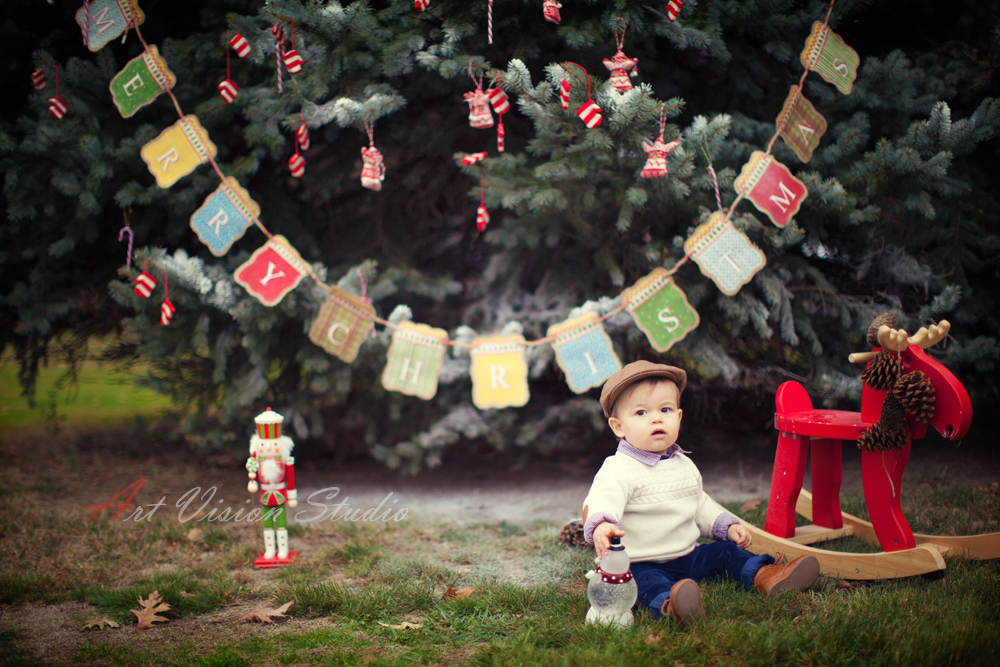 Professional Family Christmas Picture Ideas